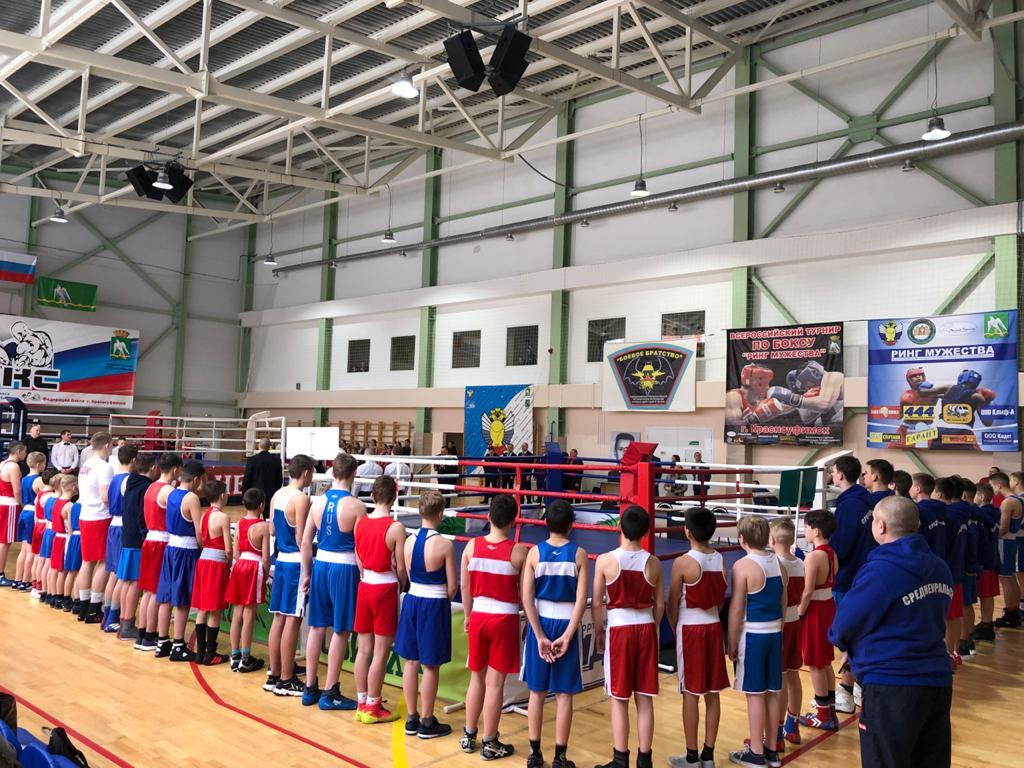 XXII региональный турнир по боксу